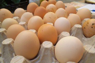 Ouă produse la o fermă din Vaslui, retrase de la raft din cauza contaminării cu Salmonella