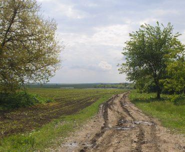 Statul român, deși are drept de preempțiune, nu a cumpărat niciun hectar de teren agricol de pe piața liberă, invocând lipsa banilor; în locul finanțării, politicienii români au preferat discursurile xenofobe și inițiative legislative anti-europene