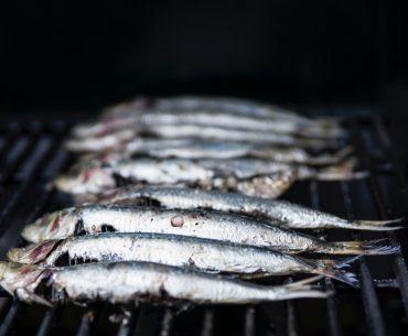 Pescarii scoțieni plătesc prețul Brexit: vând tot mai greu pe piața europeană, peștele li se strică în camioanele oprite în vămile de la frontiera U.E.