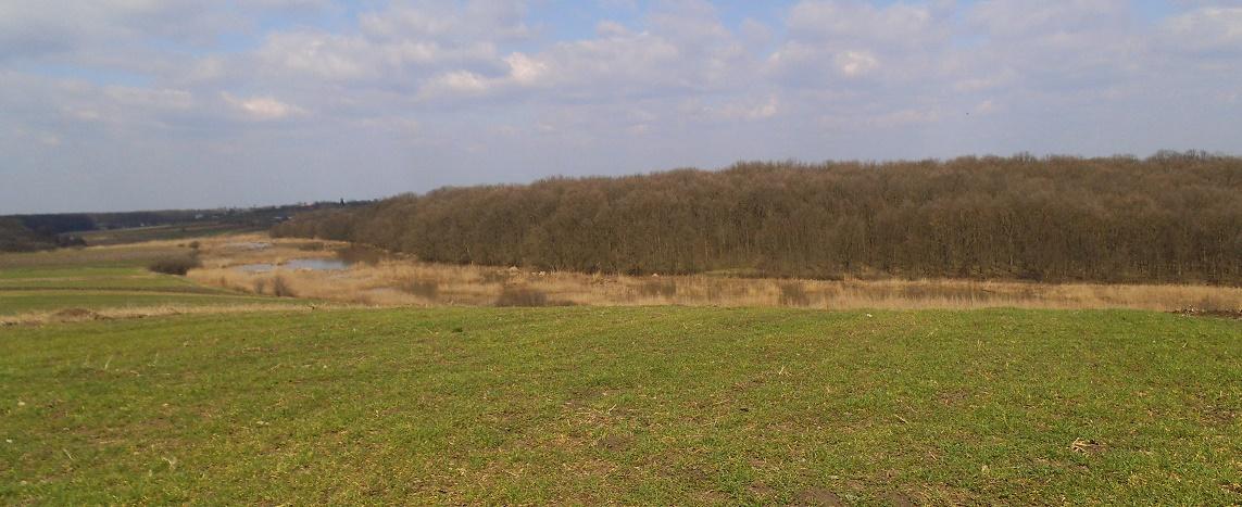 Fosta șefă a Oficiului Județean Pentru Finanțarea Investițiilor Rurale (OJFIR) Hunedoara, condamnată penal de Curtea de Apel Alba Iulia pentru că a încasat ilegal subvenții agricole în valoare de 647.152 lei