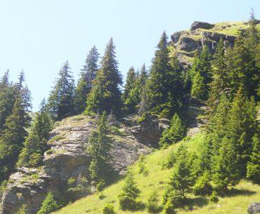 Sprijinul PSD pentru zona montană: legi peste legi, dar, deocamdată, niciun proiect nu a primit finanțare