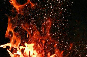 Văcarii români, președintele Franței și incendiile amazoniene