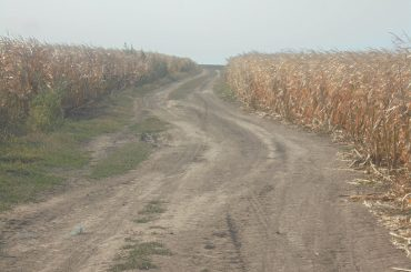 Lantulalimentar.ro în județul Ialomița: Cum a reușit fermierul Ion Bănică din Sărățeni să dețină mai multe terenuri agricole
