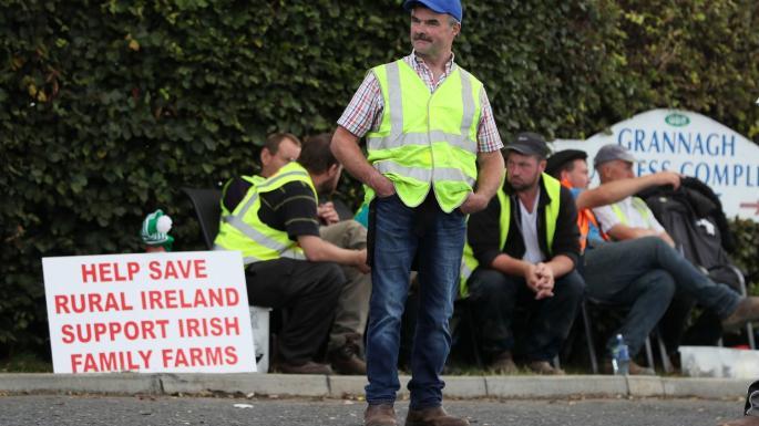 Numeroase fabrici de procesare a cărnii de vită din Irlanda, închise din cauza protestelor declanșate de fermierii nemulțumiți de prețurile de achiziție; Fermierii irlandezi poartă veste galbene, întocmai ca protestatarii din Paris