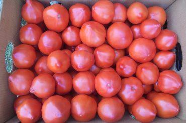 Milioane de euro pentru promovarea la export a legumelor și fructelor proaspete, a mierii , a sucurilor, laptelui și vinului bio și a salamului de Sibiu; cine sunt beneficiarii din România