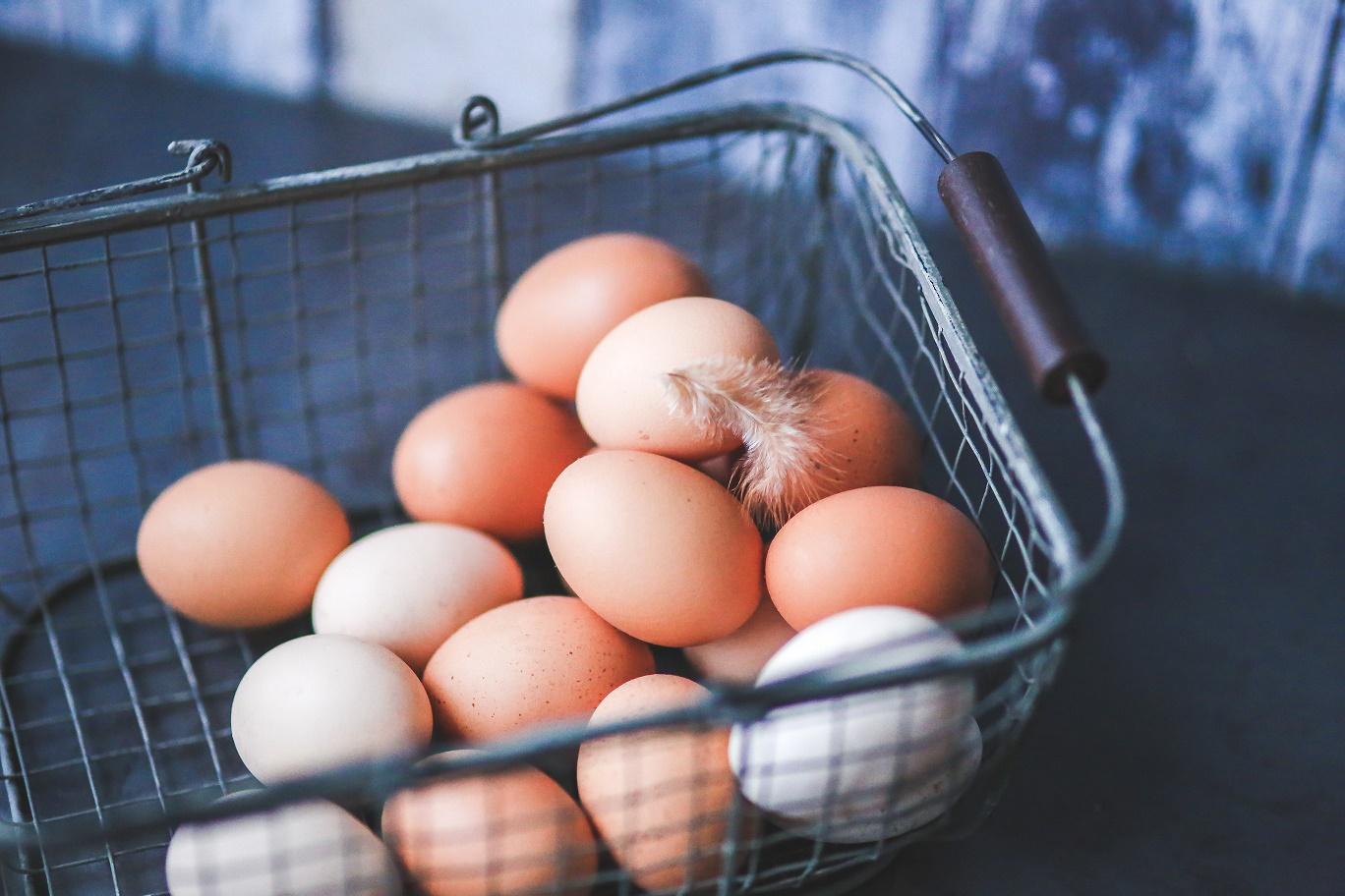 Ouăle ecologice, pe primul loc în topul celor mai căutate produse bio pe piața europeană