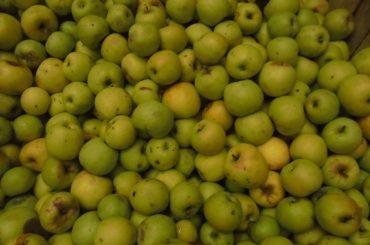 Lanțulalimentar.ro în județul Dâmbovița: De ce merele din Polonia sunt livrate în școlile din România