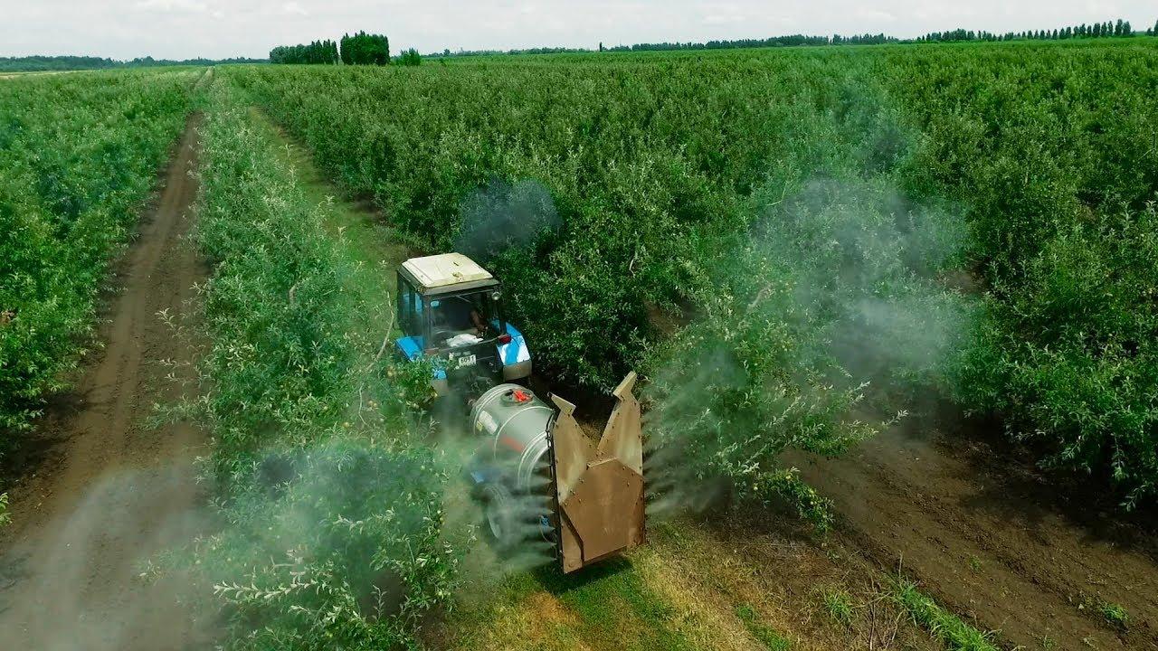 """Asociația Industriei de Protecția Plantelor din România: """"Recomandăm fermierilor români să nu achiziționeze produse de protecția plantelor în exces și să constituie stocuri"""""""