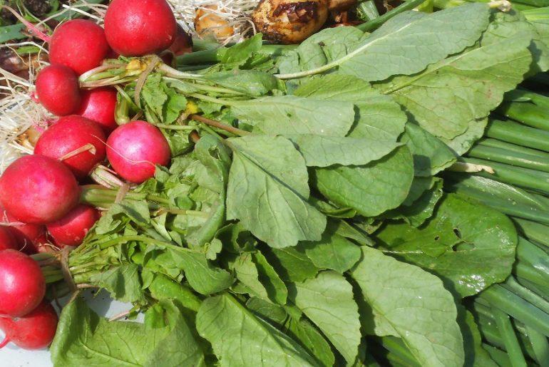Primul legumicultor care a dat anunț pe siteul Ministerului Agriculturii! Valentin Bratu din Balta Doamnei, județul Prahova, a fost lăsat baltă de comerciantul care livra în hypermarketuri!