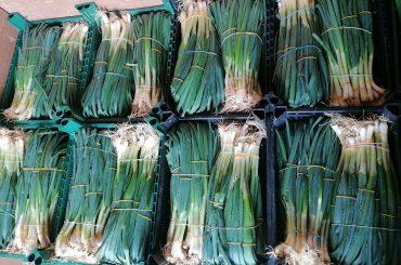 Copa Cogeca solicită Comisiei Europene să ofere producătorilor de fructe și legume sprijin financiar pe lângă banii primiți în cadrul Politicii Agricole Comune