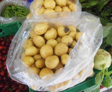 Noi beneficiari pentru Măsura 21: fermierii care produc cartofi, legume și fructe pentru industrializare; legumicultorii care cultivă în spații protejate sunt eligibili cu o suprafață de numai 300 de mp