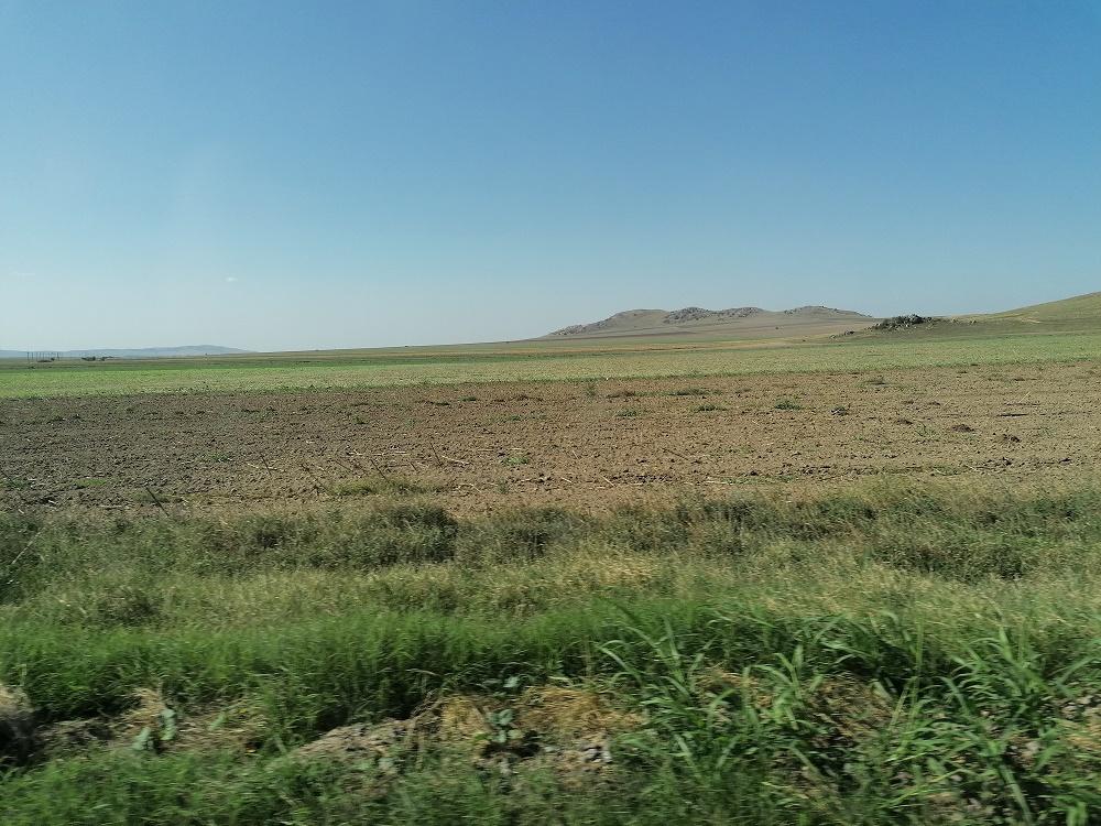 Piața funciară: între 2014 – 2017, au fost vândute în țara noastră terenuri agricole sub 5% față de suprafața agricolă totală, clienții fiind inclusiv români; procentul contrazice acuzațiile că străinii au acaparat România