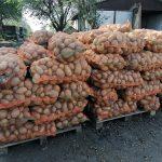 122.986 fermieri unici au depus cerere la APIA pentru a primi sprijinul financiar acordat fermierilor și IMM-urilor care au fost afectați în mod deosebit de criza COVID-19; legumicultorii și pomicultorii au depus cele mai multe cereri