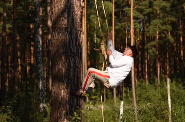 Apicultura tradițională arboricolă, practicată în Polonia și Belarus, inclusă de UNESCO în Patrimoniul Cultural Imaterial al Umanității