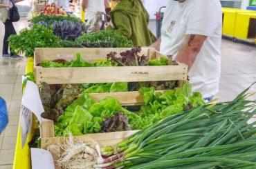 Succes remarcabil al micilor fermieri brașoveni: membrii Cooperativei Sol Bun dispun de un spațiu propriu în Brașov pentru a-și vinde produsele