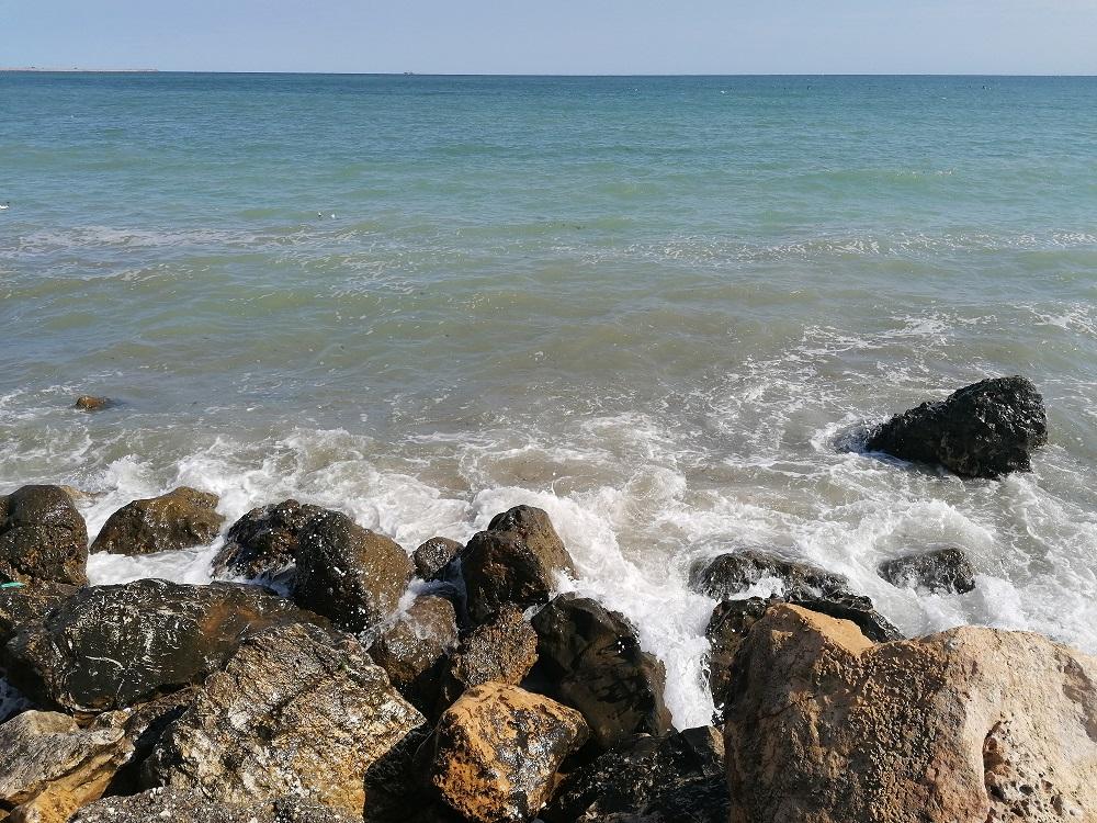ANSVSA: Bucătarii și ajutoarele de bucătar activi pe litoral nu au cunoștințe minime de igienă alimentară; cu toate acestea, autoritatea anunță că este al doilea an fără nicio toxiinfecție alimentară